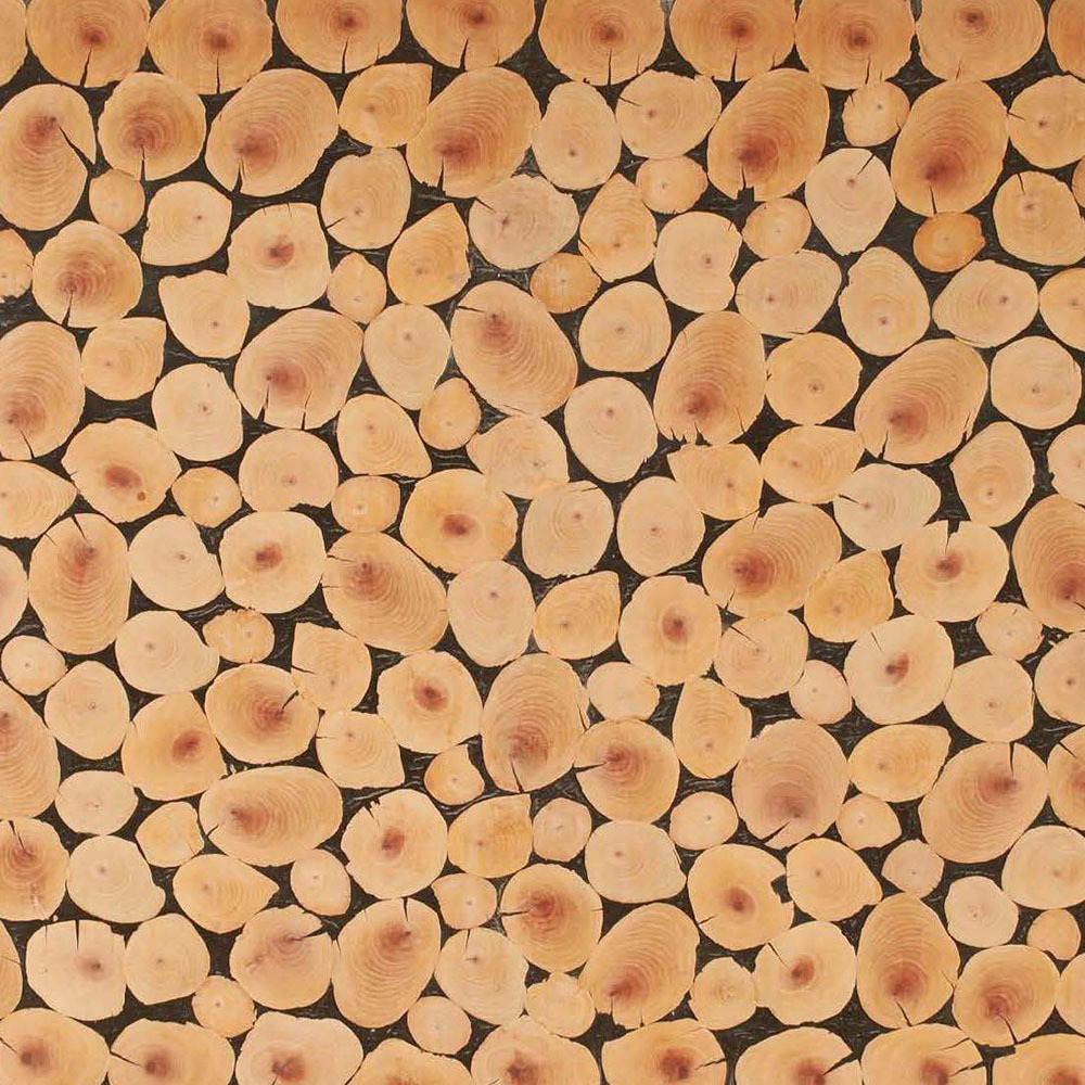 Butt Cut: Wood Pile
